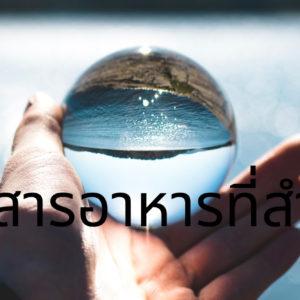 น้ำ: ศาสตร์แห่งสารอาหารที่สำคัญที่สุดของธรรมชาติ